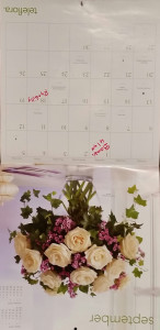 Hanging a calendar upside down forces the brain to change how it processes information.